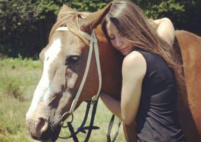 Order horse drawings online