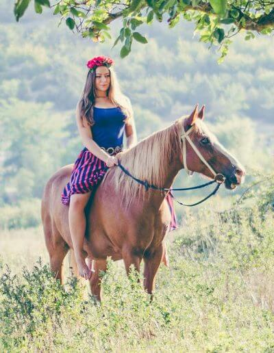 Rufa artist professional horse painter